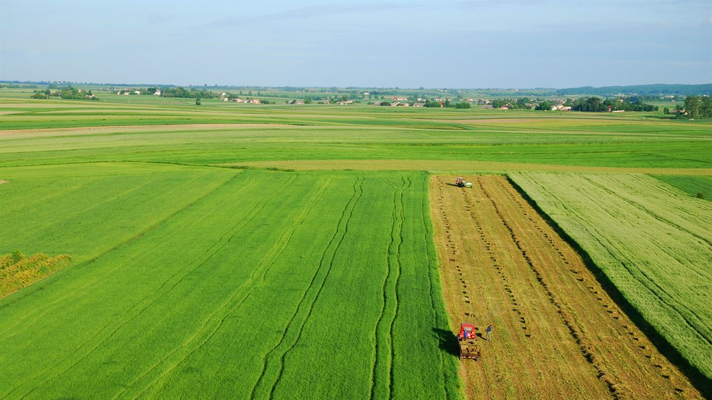 Flygfoto odling jordbruk landskap