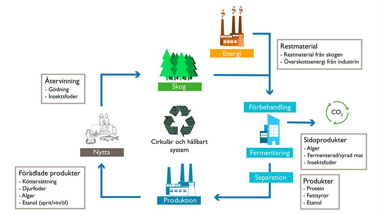 Foodtech process illustration