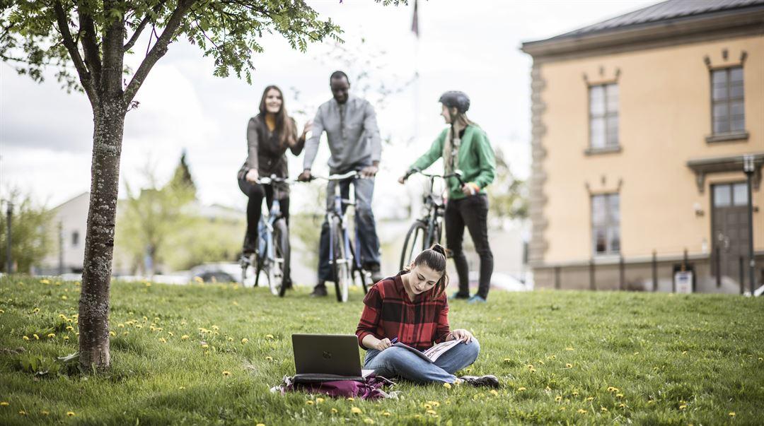 Internationalisering IRO utlandsstudier utbytesstudent