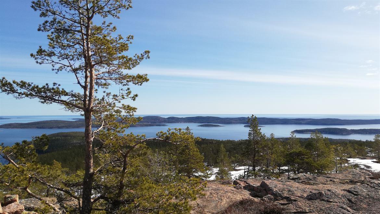 WAYA Friluftsprogram: Utsikt mot havet och skärgården från Skuleberget