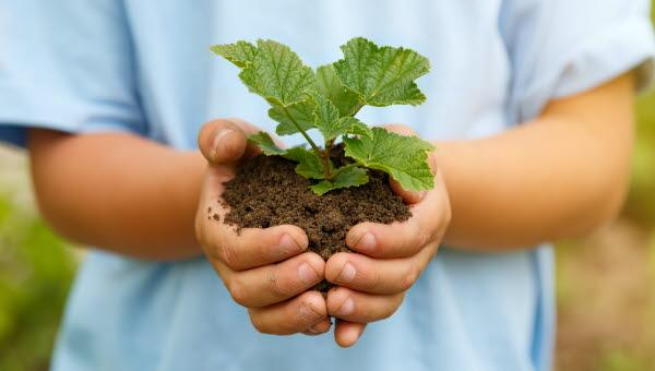 barn håller jordig planta i bägge händerna