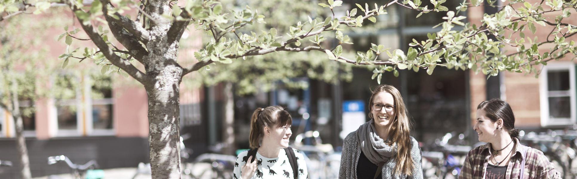 Studenter, Sundsvall, utomhus
